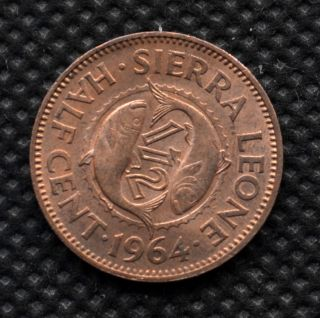 Sierra Leone 0.  5 Cent(1/2) 1964.  Km16.  African Coin. photo
