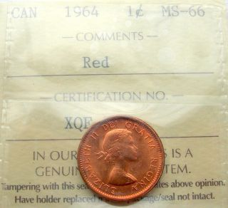 1964 Small Cent Iccs Certified Ms - 66 Red Gem,  Stunning Canada Rare Grade Penny photo