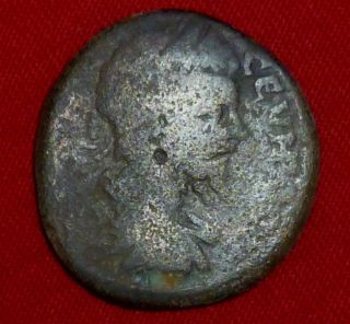 Roman Ancient Coin - Septimius Severus - Thrace Pautalia Circa 193 - 211 Ad - 1838 photo