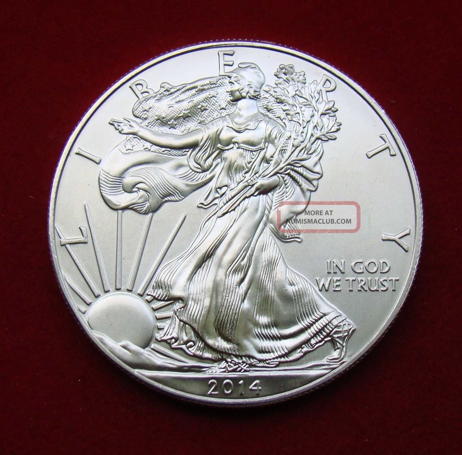 2014 Silver Dollar Coin 1 Troy Oz American Eagle Walking