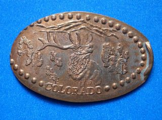 Colorado Elongated Penny Co Usa Cent Centennial State 1876 Souvenir Coin Elk photo