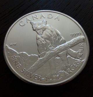 1 Oz.  9999 Silver 2012 Canada Cougar Wild Life Series Bullion Coin From Tube photo