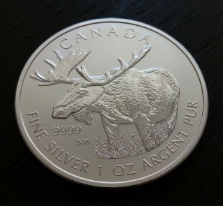 2012 Canada Moose Wild Life Series 1 Oz.  9999 Silver Bullion Coin From Tube photo
