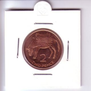 St Helena 2 Pence - Great Britain (1998) Donkey Unc photo