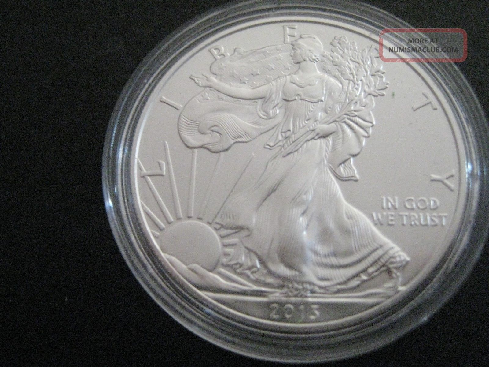 2013 Silver American Eagle One Ounce