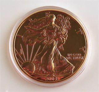 2004 Gold Overlay American Eagle 1oz Silver Bullion Coin photo