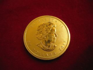 "Canadian ""$ 50"" 2011 Maple Leaf 24k Gold Coin One Ounce.  9999 Pure - photo"