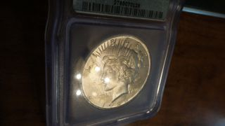 1923 Peace Silver Dollar Icg Ms64 photo