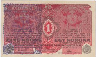 Consiglio Nazionale Citta Di Fiume - 1 Krone 1916 Austria Croatia Banknote - Unc photo