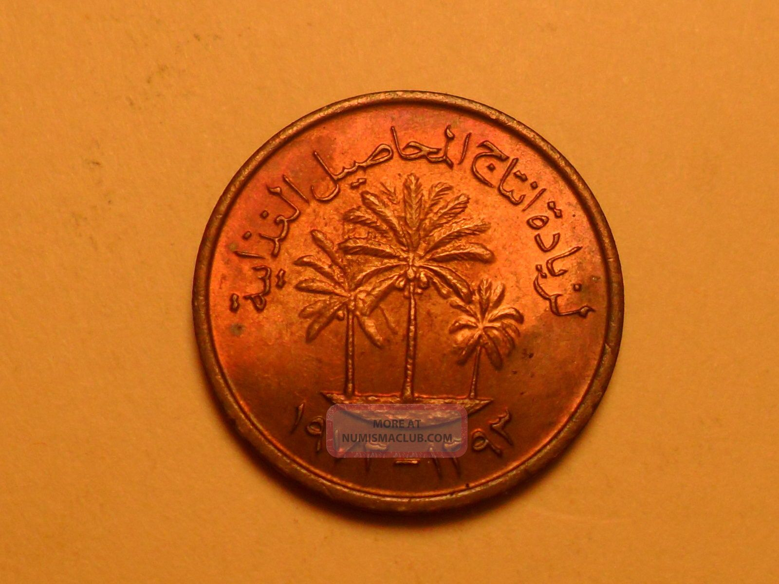 1973 Rainbow Toned Copper 1 Fils (ah1373) Palm Tree Uae Coin Middle East photo