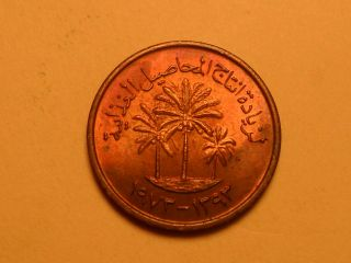 1973 Rainbow Toned Copper 1 Fils (ah1373) Palm Tree Uae Coin photo