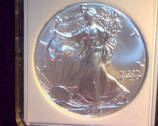 2016 Silver Eagle Coin photo