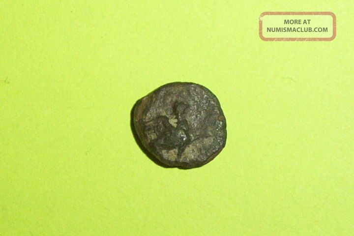 Rare Ancient Greek Coin Griffin Ionia Teos 400 Bc Beast With Paw Raised Lyre Old Coins: Ancient photo