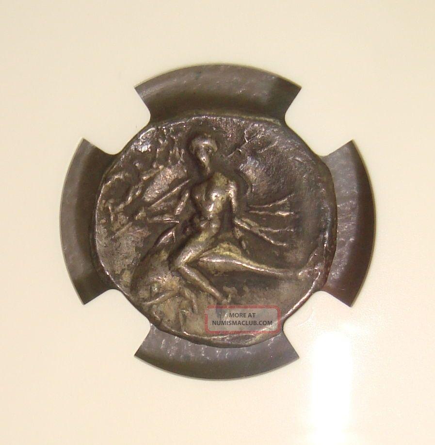 281 - 240 Bc Calabria,  Taras Ancient Greek Silver Didrachm Ngc Choice Xf 4/5 2/5 Coins: Ancient photo