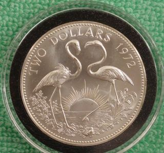 1972 Bahamas Bu Two Dollar Sterling Silver Flamingo Coin In Airtite photo
