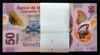Banco De Mexico 100 X 50 Pesos Polymer Series P 13.  May.  2015.  Bundle.  Crisp Unc. photo