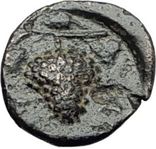 Temnos In Aeolis 350bc Dionysus Grapes Rare Authentic Ancient Greek Coin I60922 photo