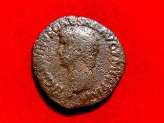 Lucernae Claudius I Bronze As,  Rome 41 - 42 A.  D.  Minerva With Javelin.  Ric 100. photo