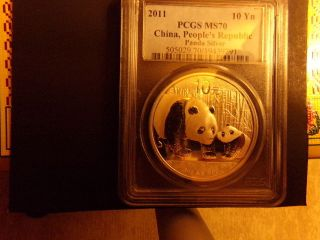 2011 1 Oz Silver Chinese Panda Ms - 70 Pcgs photo