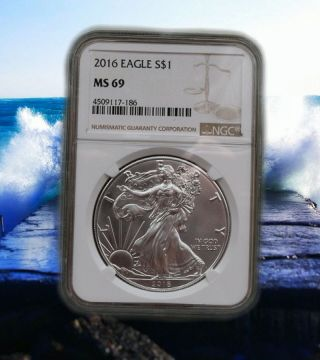 2016 American Eagle Ngc Ms69 Brown Label photo