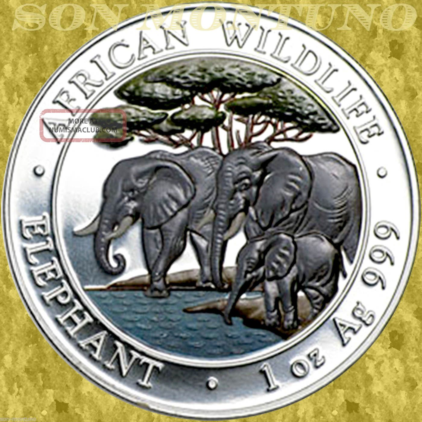 2013 Somalia African Wildlife Elephant 1 Oz Colored Silver Coin Only 5000 Minted Africa photo