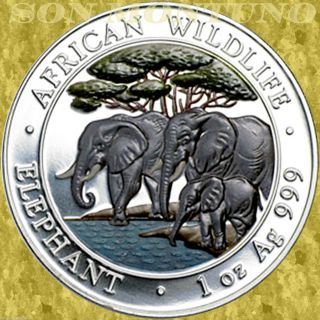 2013 Somalia African Wildlife Elephant 1 Oz Colored Silver Coin Only 5000 Minted photo