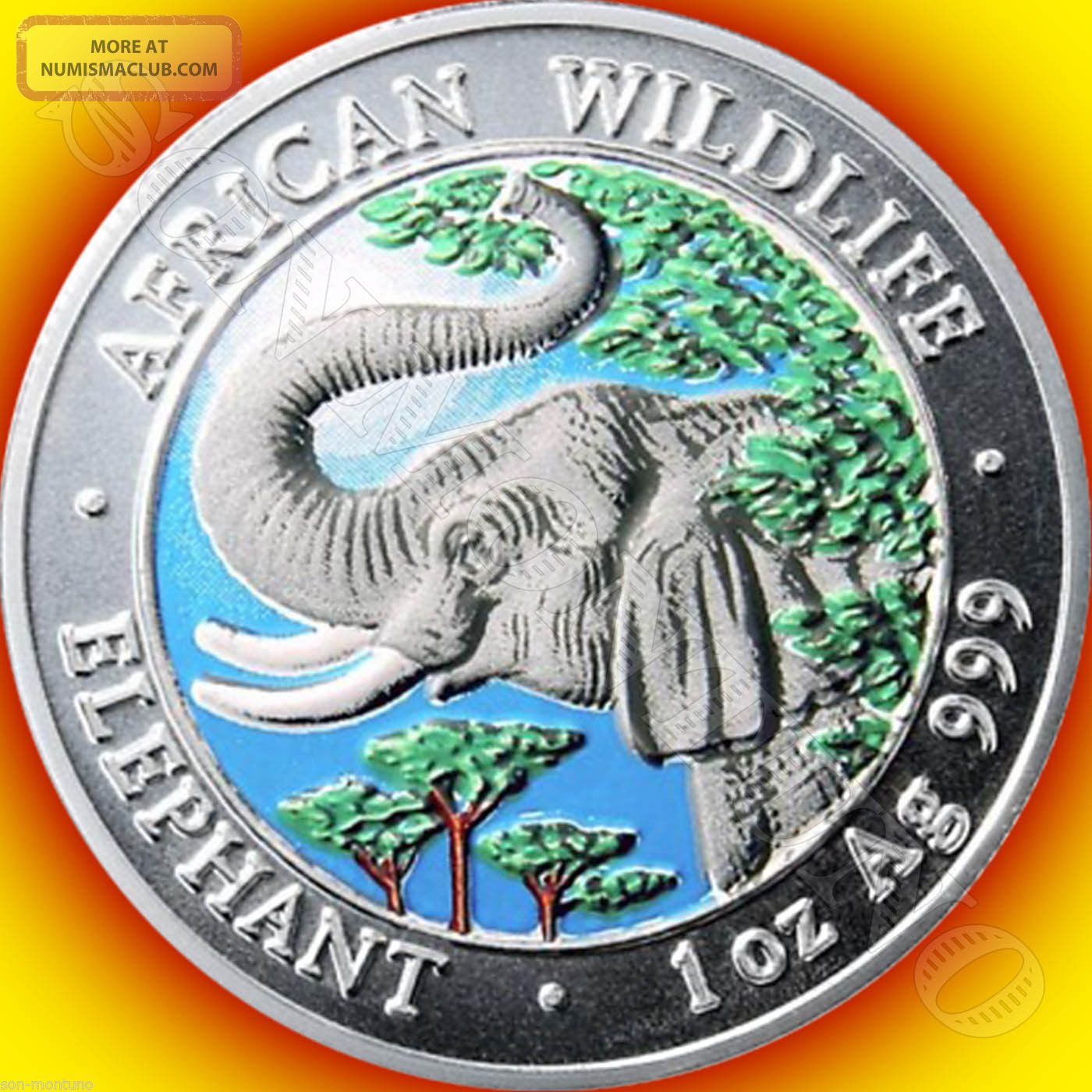 2005 Somalia African Wildlife Colorized Elephant Silver Coin Hard Date To Find Africa photo