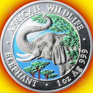 2005 Somalia African Wildlife Colorized Elephant Silver Coin Hard Date To Find photo