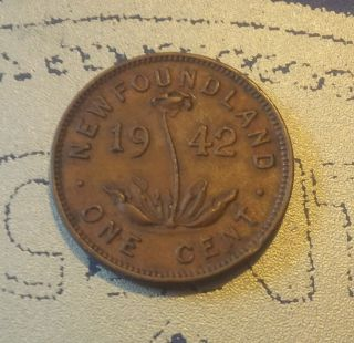 1942 Newfoundland Small Cent (c1942nl - 2) (0.  50 Cent Combined) photo