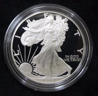 1996 American Silver Eagle Proof And Great Gift photo