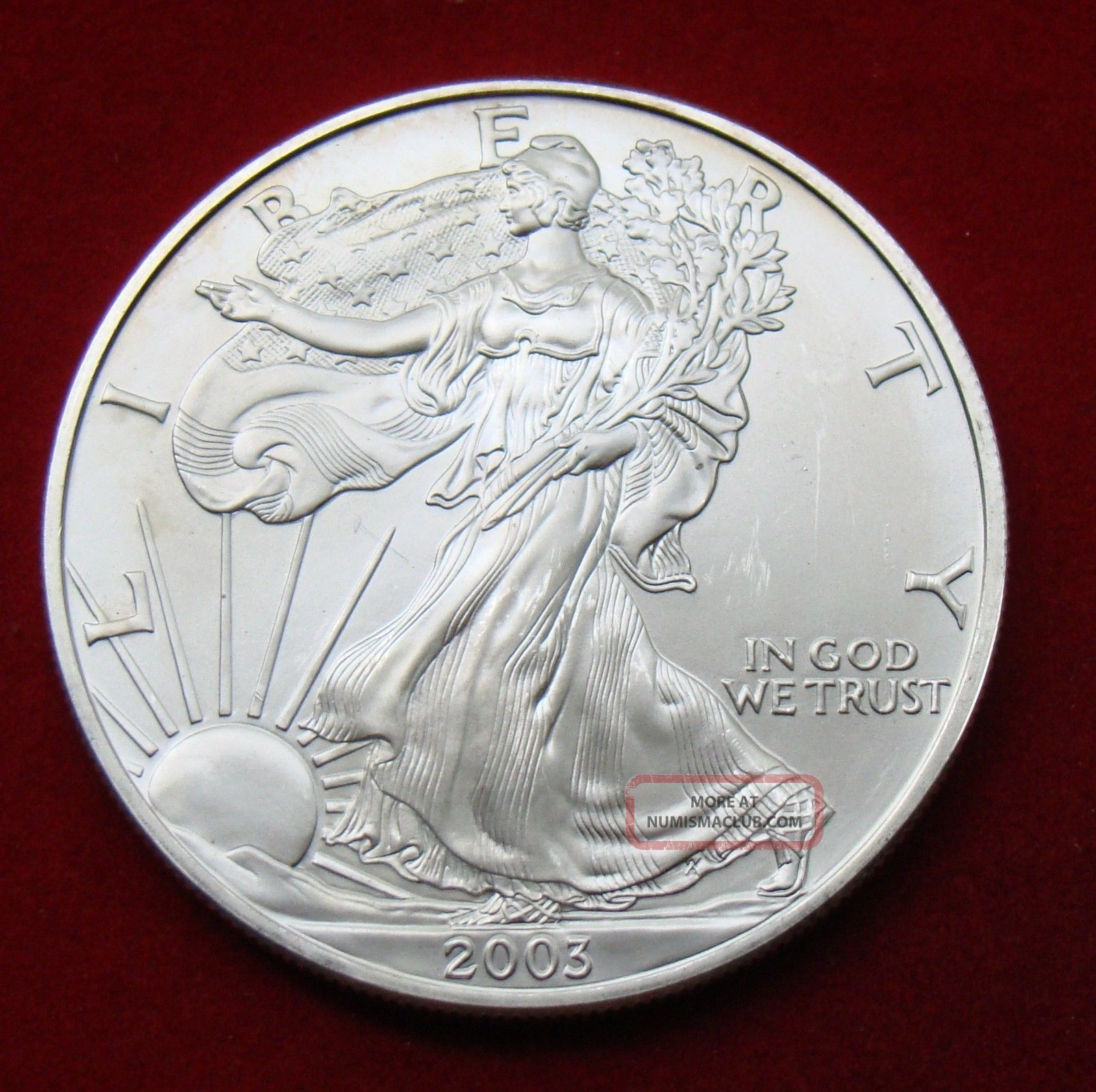 2003 Silver Dollar Coin 1 Troy Oz American Eagle Walking
