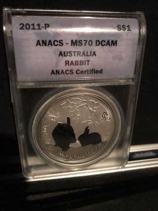 2011 - P Anacs Ms70 Dcam Australia Rabbit 1oz Fine Silver Coin photo