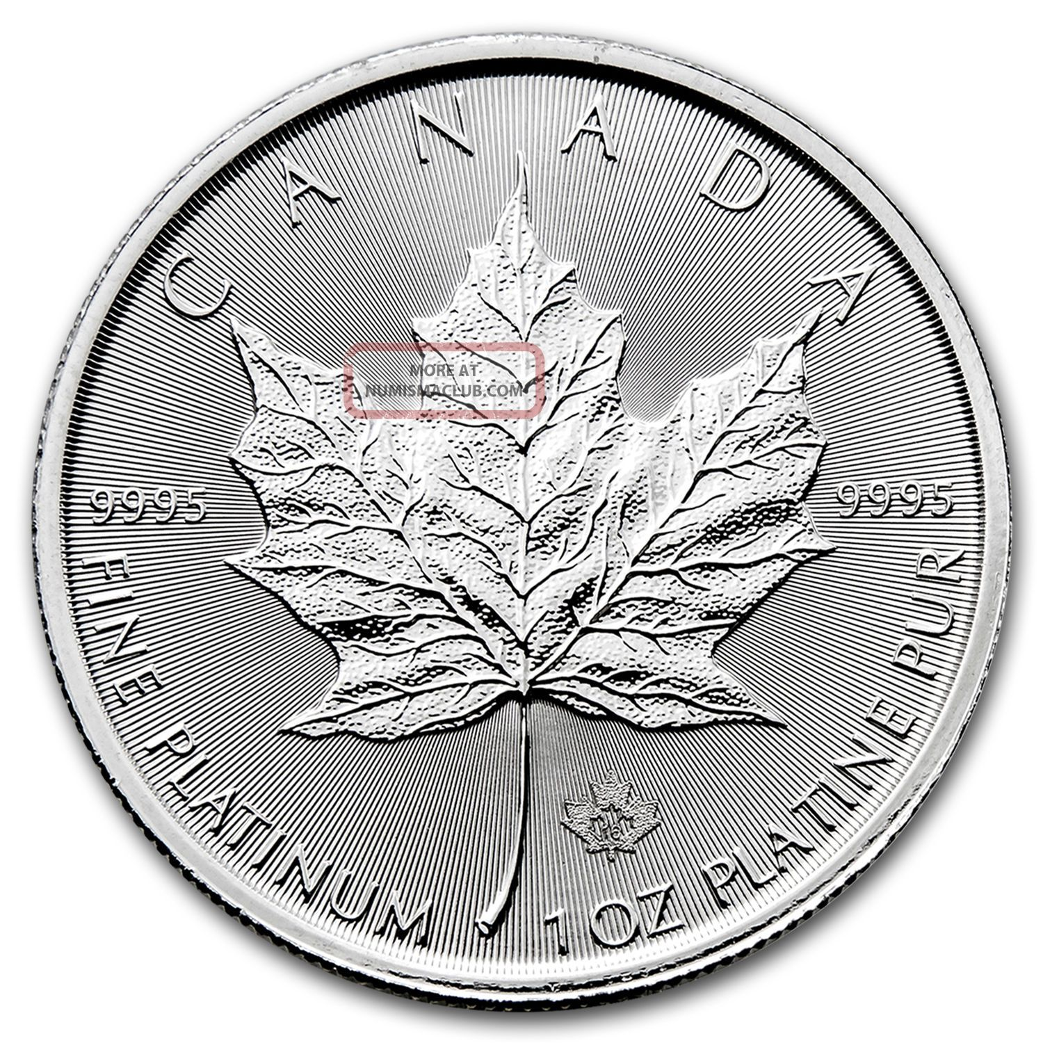 2017 Canada 1 Oz Platinum Maple Leaf Bu Bars & Rounds photo
