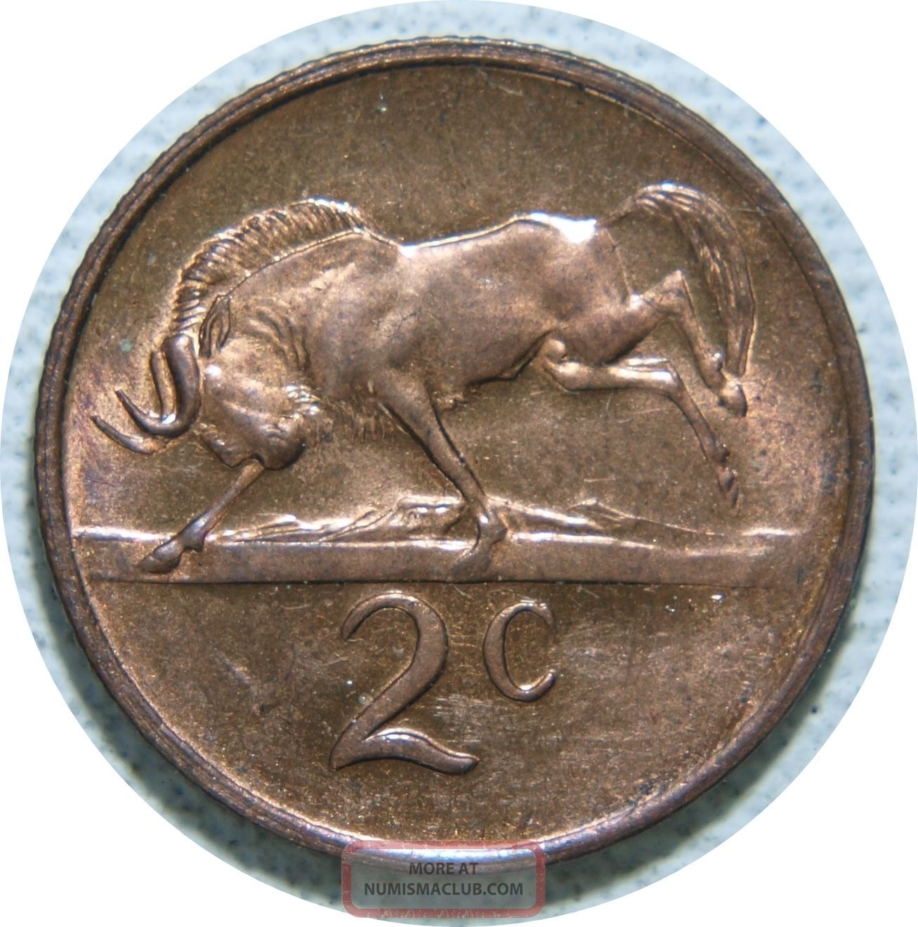 South Africa 2 Cents 1977 Bronze Km 83 High Details C80 Africa photo