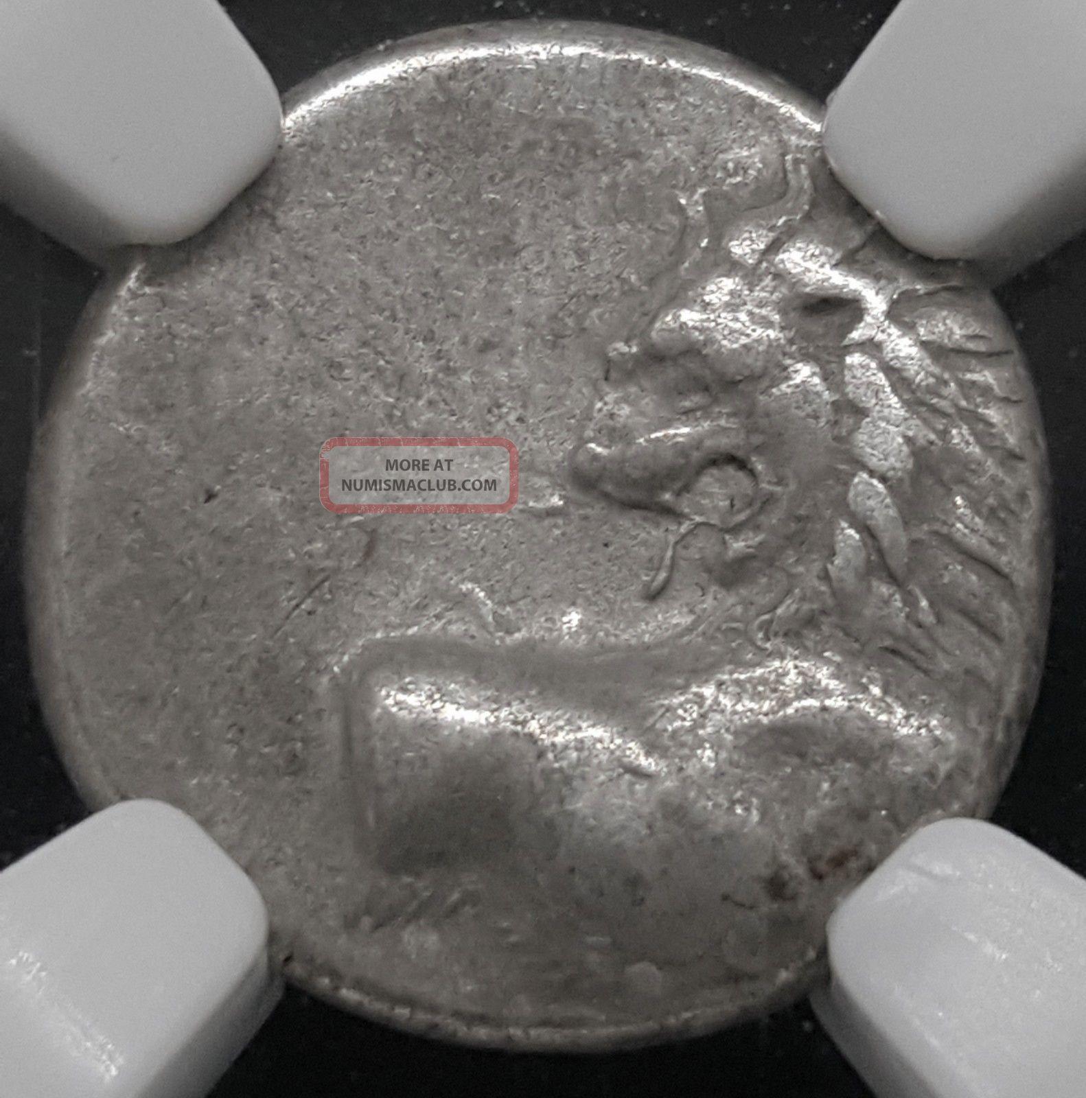 Thracian Chersonesus Lion Ar Hemidrachm Silver 2.  38g 4th Century Bcngc Xf Coins: Ancient photo