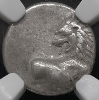 Thracian Chersonesus Lion Ar Hemidrachm Silver 2.  38g 4th Century Bcngc Xf photo