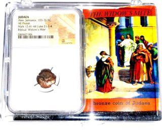 Widows Mite Judean Lepton Of Alex Janeaus Coin,  Ngc Certif With Display Box photo