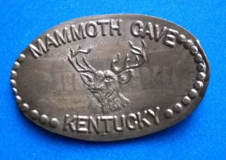 Mammoth Cave Elongated Penny Ky Usa Cent Big Mike ' S Rock Shop Souvenir Coin Deer photo